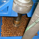 conveying macadamia nuts